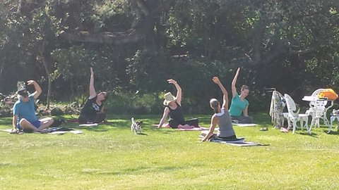 Yoga in Milk House Garden