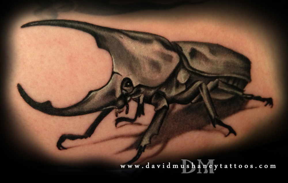 Black and Grey Rhinoceros Beetle Tattoo by David Mushaney