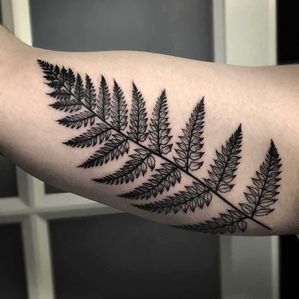 Blackwork Fern Nature Tattoo by David Mushaney