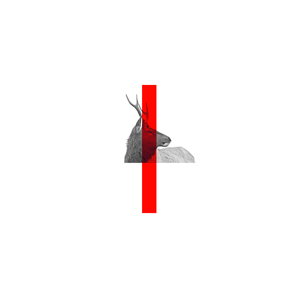 thumbs-vertic.png