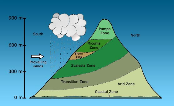 Vegetation zones of Santa Cruz Island, Galapagos