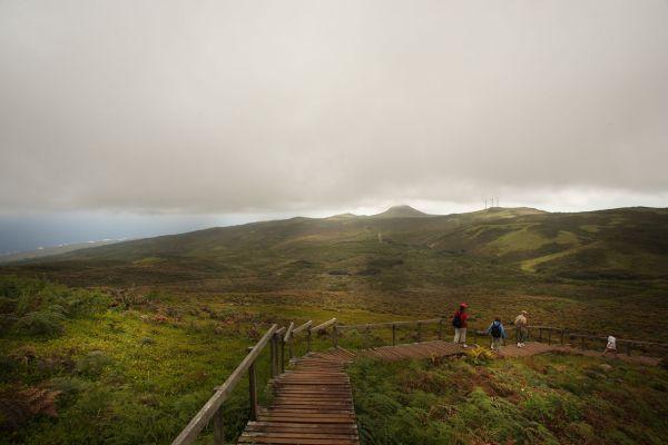 Pampa zone, San Cristobal Island, Galapagos