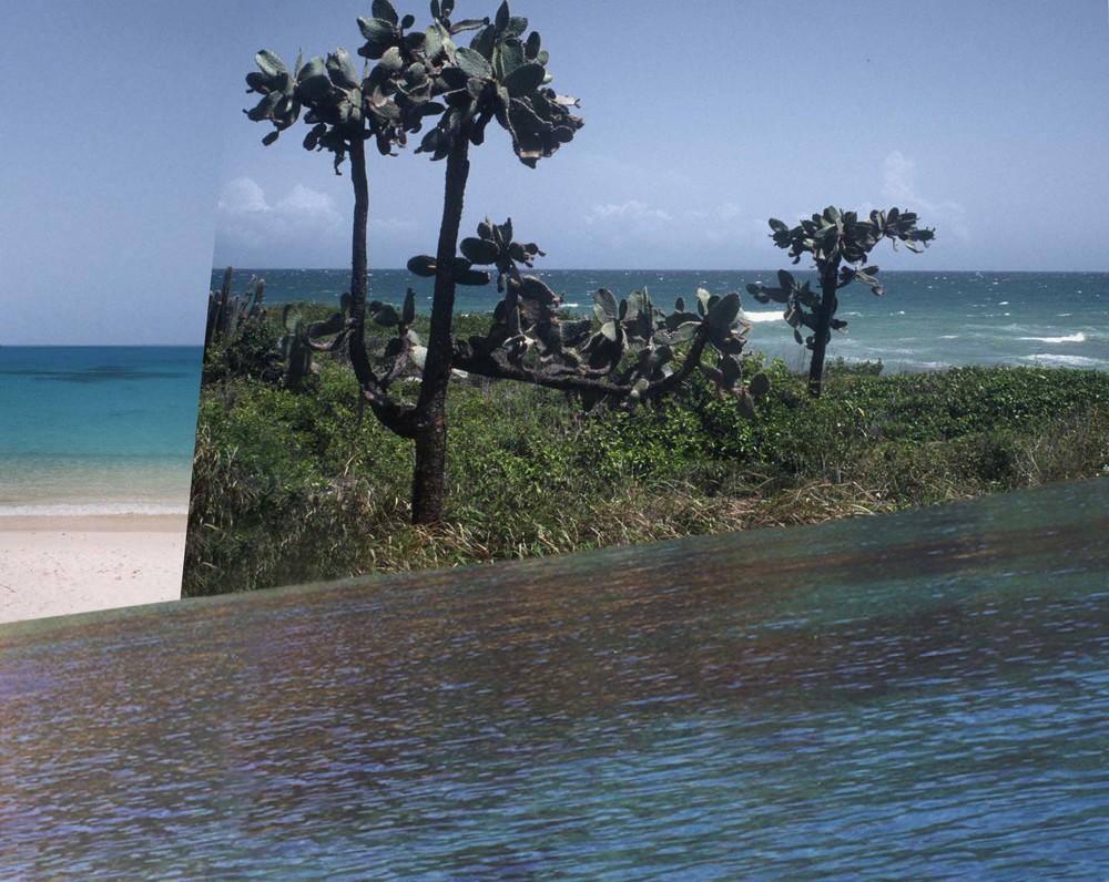 guanica-puerto rico-cacti-prickly pear-island-ocean