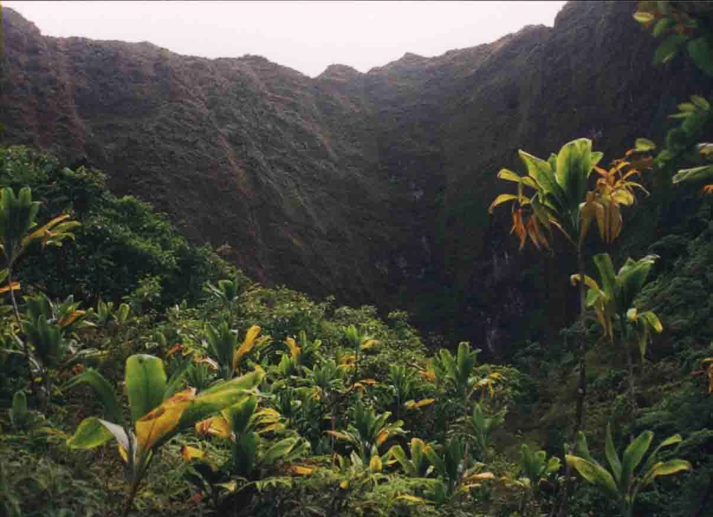 Hanakapiai Valley, Kauai