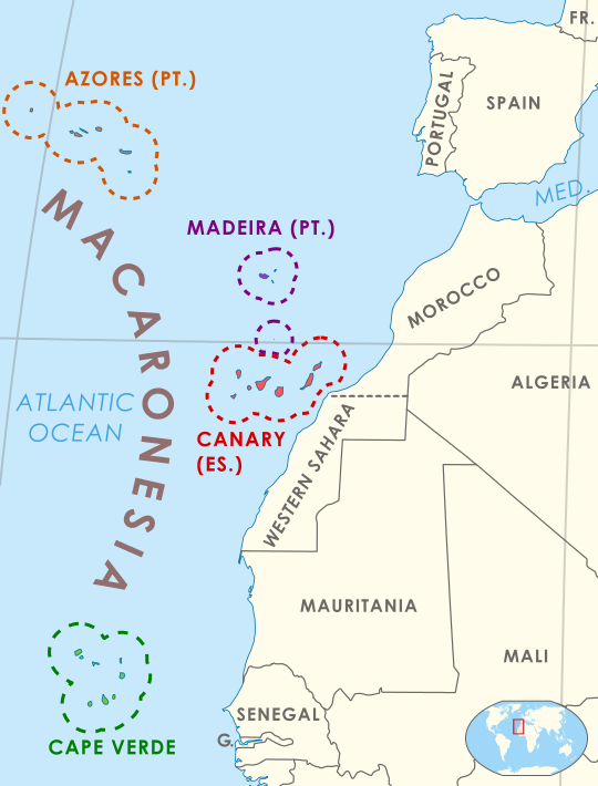 The Macaronesian Ecoregion