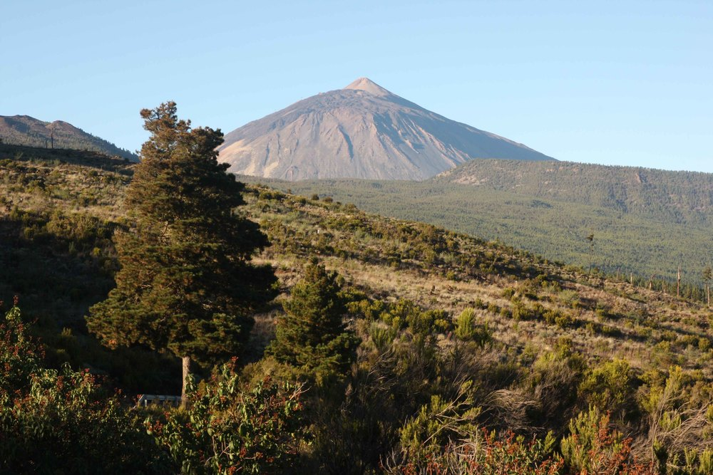 Teide from the north slope of the island (my photo)