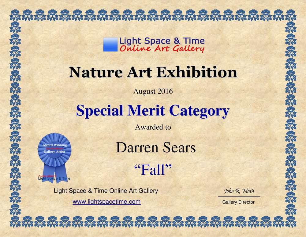 light_space_time_online_galley_nature_art_exhibition_special_merit_award_darren_sears