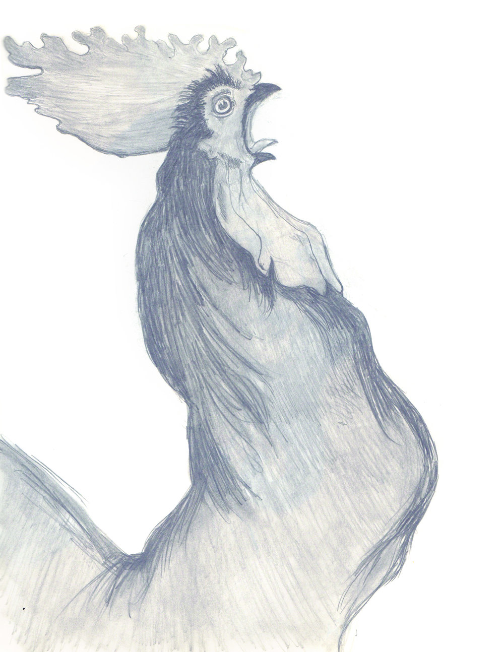 Toulouse-Lautrec Rooster