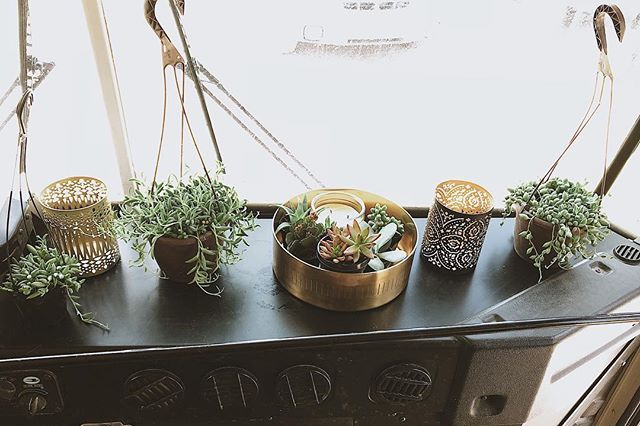 Oh how I've missed plants. We still have work to do but I couldn't resist!! Who's with me??? 🌵🌵🌵 . . . . . #skooliegeek #skoolie #skoolieconversion #tinyhouse #tinyhousemovemenet #homeiswhereyouparkit #busliving #buslifestyle #buslife #buslifeadventure #buslifemovement #glampimg #camplife #adventuremobile #thatsdarling #livefree #wildandfree #liveauthentic #nomad #nomadic #nomadiclife #NomadicMillers #buswife #buskids #adventureawaits #livingsmall #therollinghome #neverstopexploring #projectvanlife #gorving
