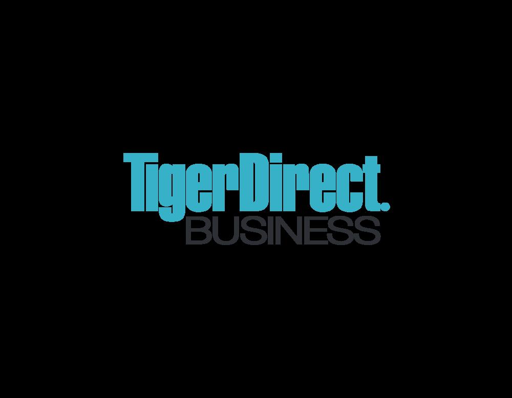 TIGERDIRECT BUSINESS — Katherine Seong