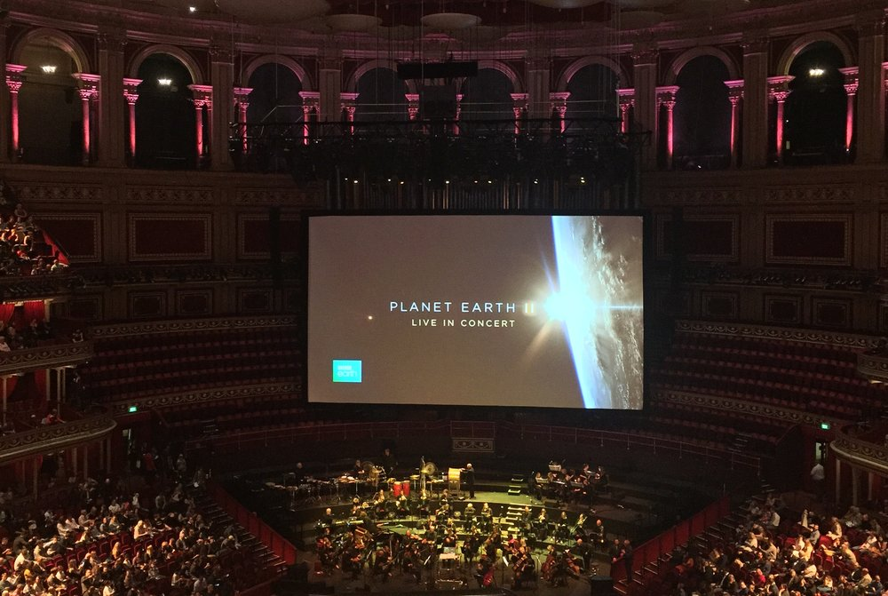 I had a great view of the screen and BBC Concert Orchestra!