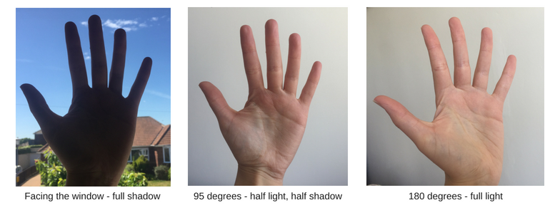 How the light changes over your hand as you turn it away from the window light.