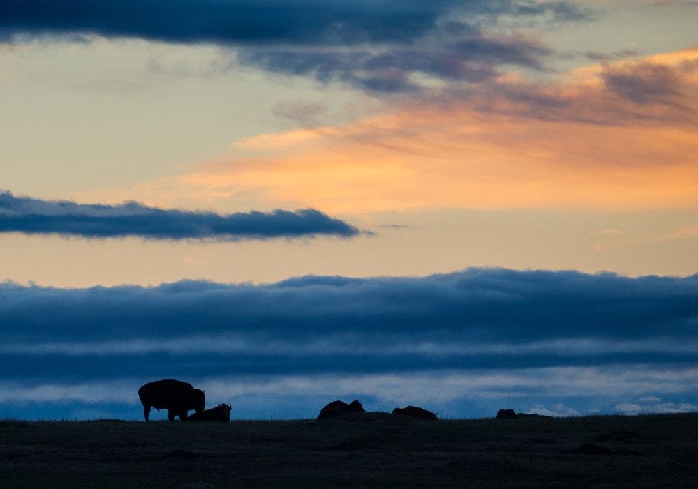 North Dakota and Montana -