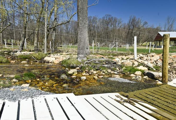 The newly engineered cattle path at Furnace Stream Farm in Windsor Township protect their water resources. Berks Nature and Stroud Water Research Center and other groups are working with farmers in the region to protect water resources and reducing pollutants on farms.