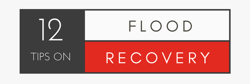 12 TIPS ON FLOOD RECOVERY.png