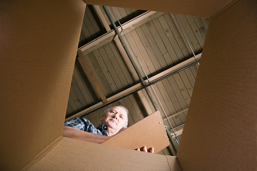 Looking in box.jpg