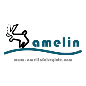 patrocinador_amelin