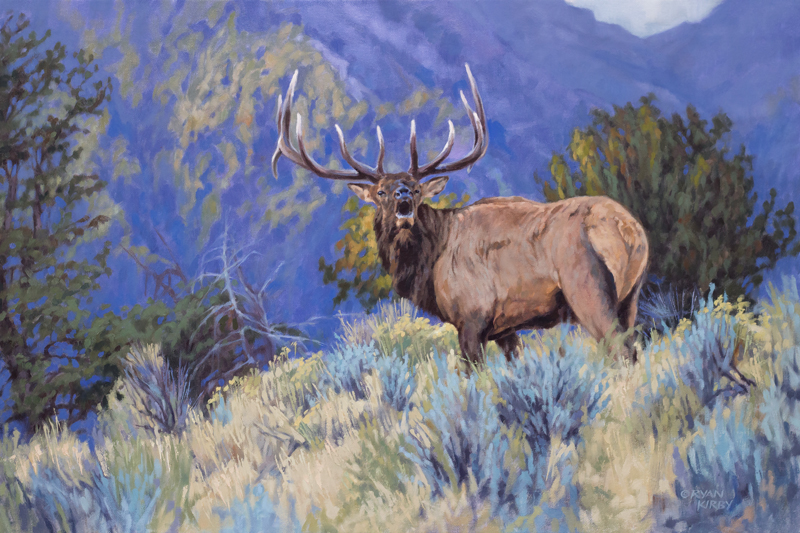 Original Elk Oil Painting The Defender by Ryan Kirby