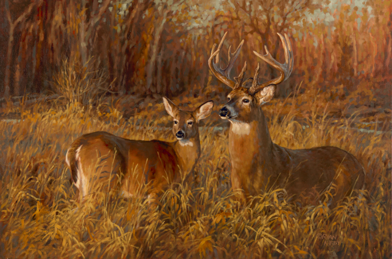ryan_kirby_original_whitetail_deer_painting_creekbottom_counterparts_nwtf