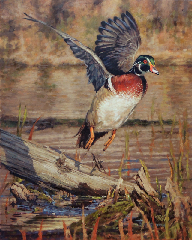 ryan_kirby_original_wood_duck_painting_cupped_and_committed_nwtf