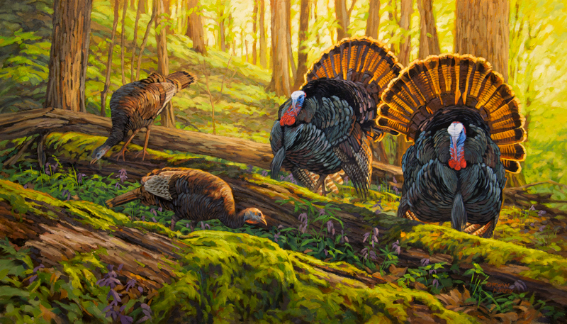 ryan_kirby_original_strutting_wild_turkey_painting_double_date