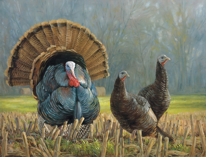 ryan_kirby_original_wild_turkey_painting_turkey_country_2010_nwtf_stamp_print