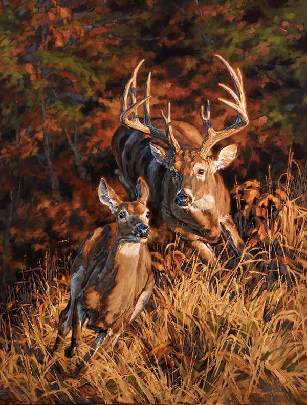 ryan_kirby_original_whitetail_deer_painting_turn_and_burn_outdoor_life_cover