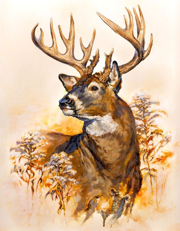 ryan_kirby_original_whitetail_deer_painting_mr_photogenic_outdoor_life_cover