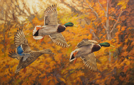 Ryan-Kirby-Ducks-Fall-Break-50x32.jpg