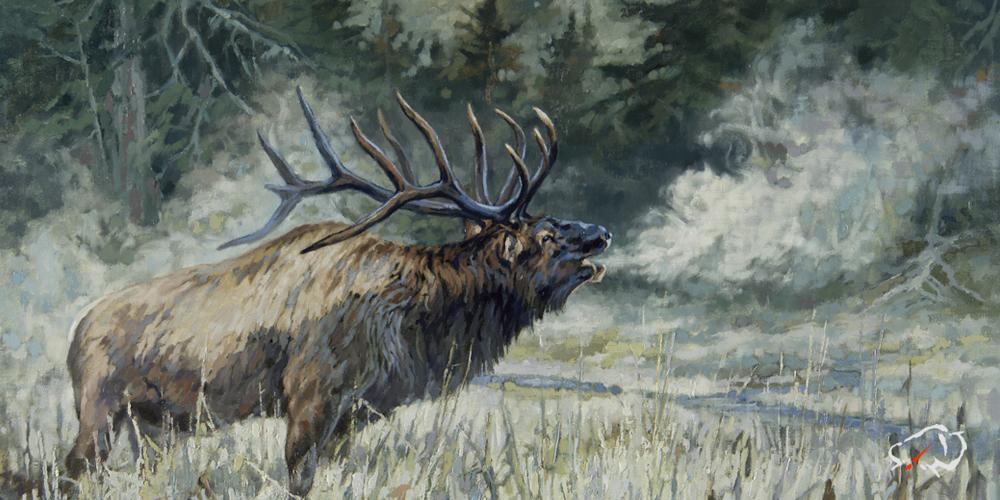 Ryan-Kirby-Elk-Mountain-Mystic.jpg