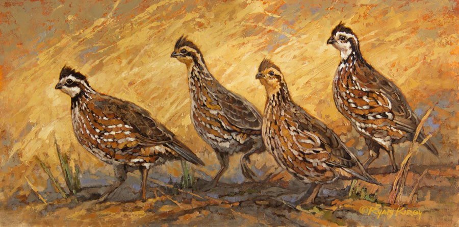 Copyright-Ryan-Kirby-Original-Bobwhite-Quail-Painting-Follow-The-Leader-20x10.jpg