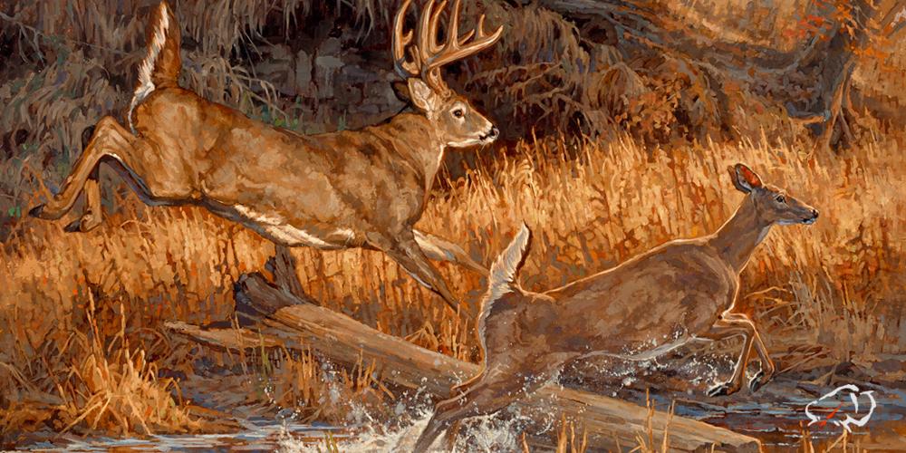 Ryan-Kirby-Deer-River-Runners.jpg