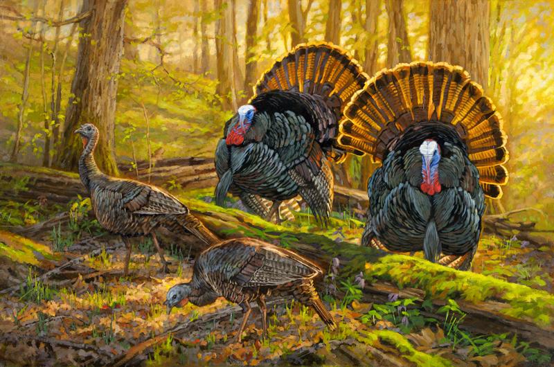 Copyright-Ryan-Kirby-Eastern-Wild-Turkey-Original-Oil-Painting-Double-Date.jpg