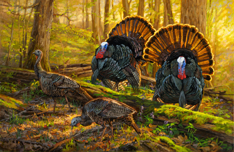 Copyright-Ryan-Kirby-Wild-Turkey-Painting-Double-Date-36x24.jpg
