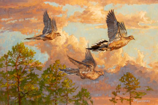 original-oil-painting-mourning-dove-ryan-kirby .jpg