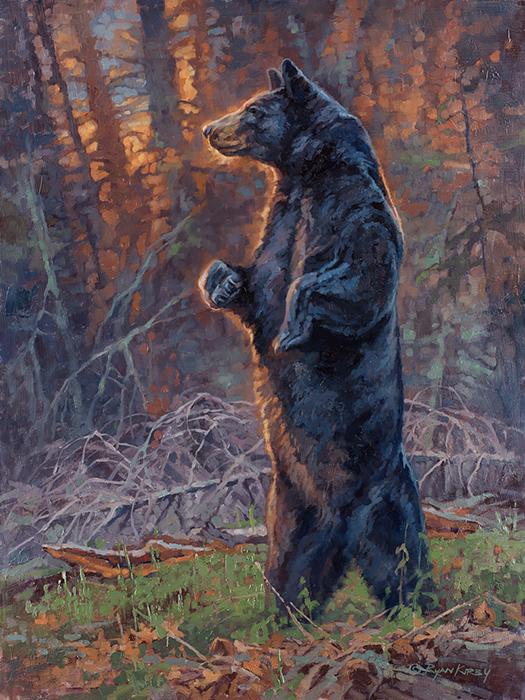 original-black-bear-oil-painting-ryan-kirby.jpg