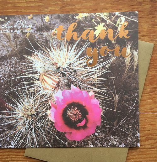 Thank You Pink Cactus Flower 5718 Lark Press