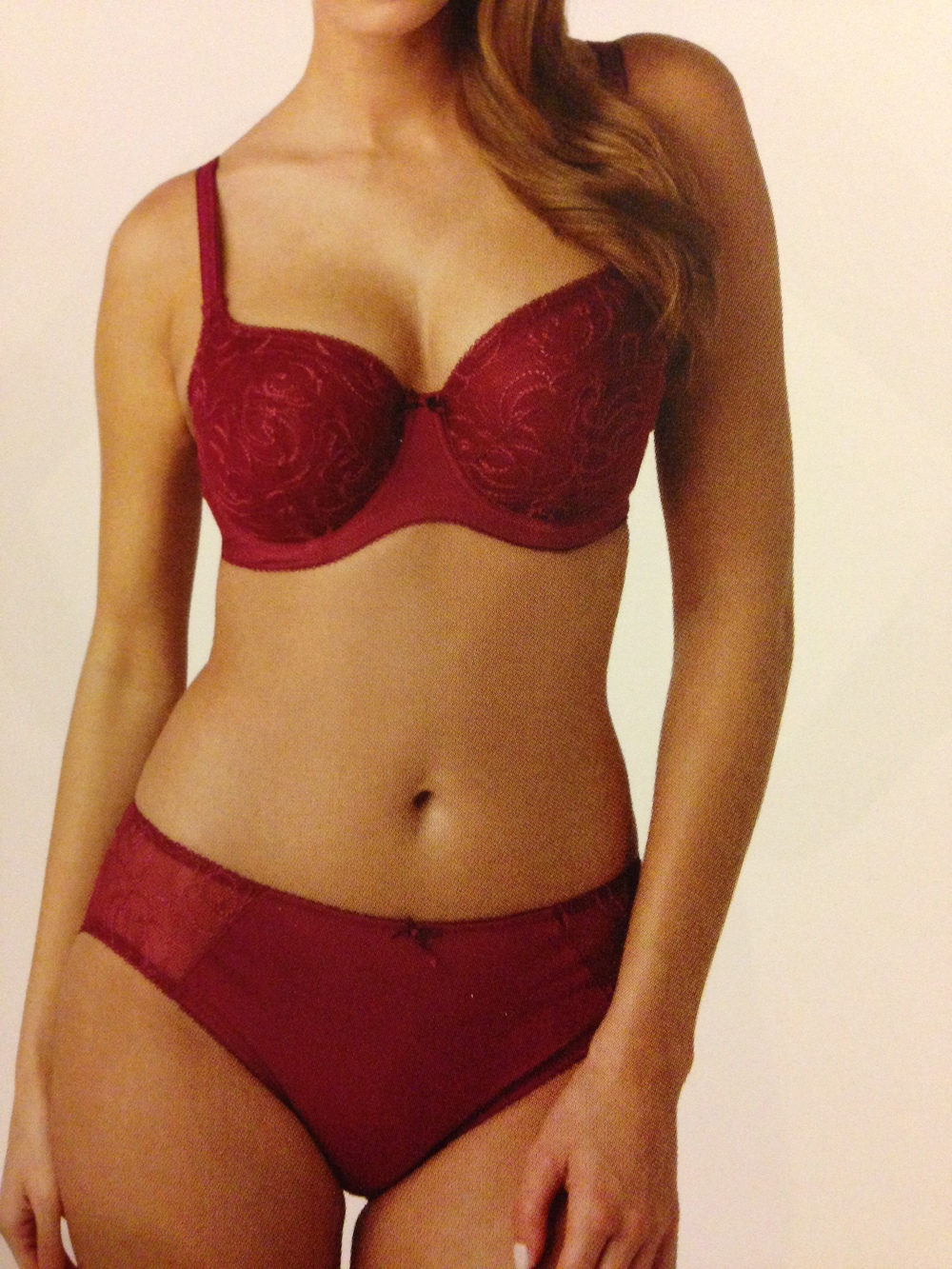 Rhapsody Balconnet Bra in Cranberry, 28-40 D-K, 42 D-J, 44 DD-FF, and Brief, 8-20