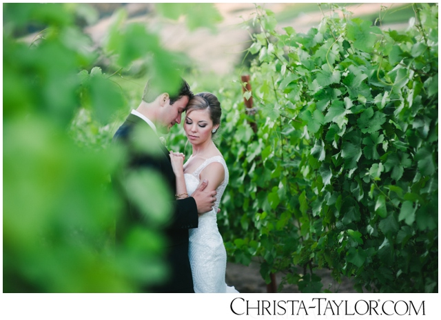 zenith vineyard wedding photo christa taylor_0122