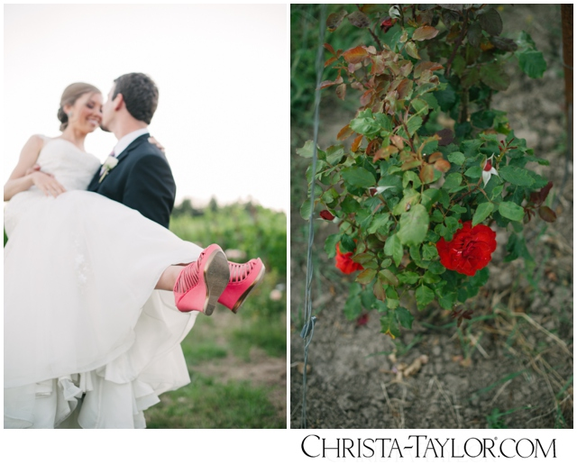 zenith vineyard wedding photo christa taylor_0148