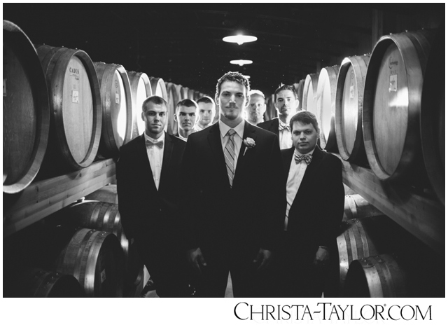 zenith vineyard wedding photo christa taylor_0155