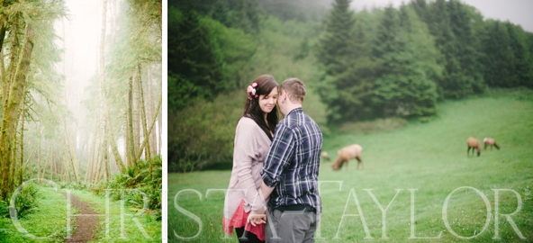 romantic forest engagement portland or_2099.jpg