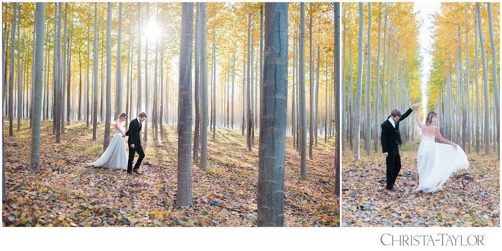 boardman tree farm engagement_2813.jpg
