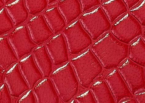 CROCO RED detail.jpg