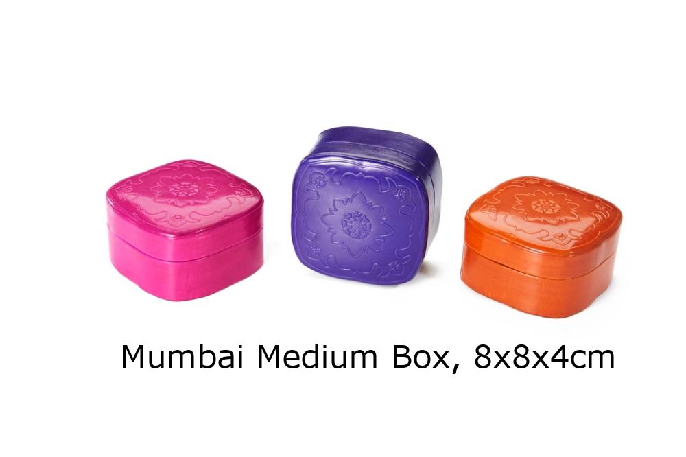 Mumbai Box.jpg