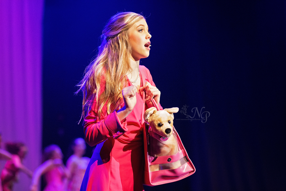 legally blonde jr myrtle beach forestbrook middle school