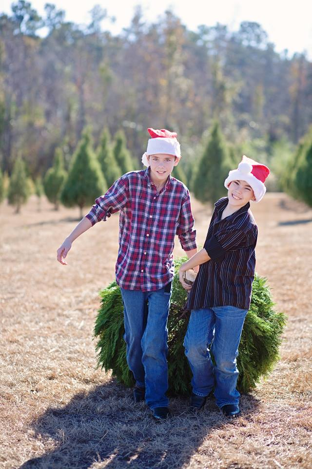 booths christmas tree farm conway sc