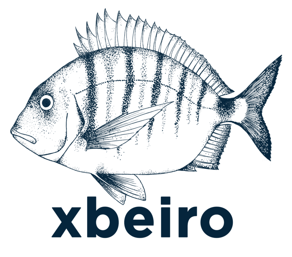 xbeiro | motion graphics & underwater video