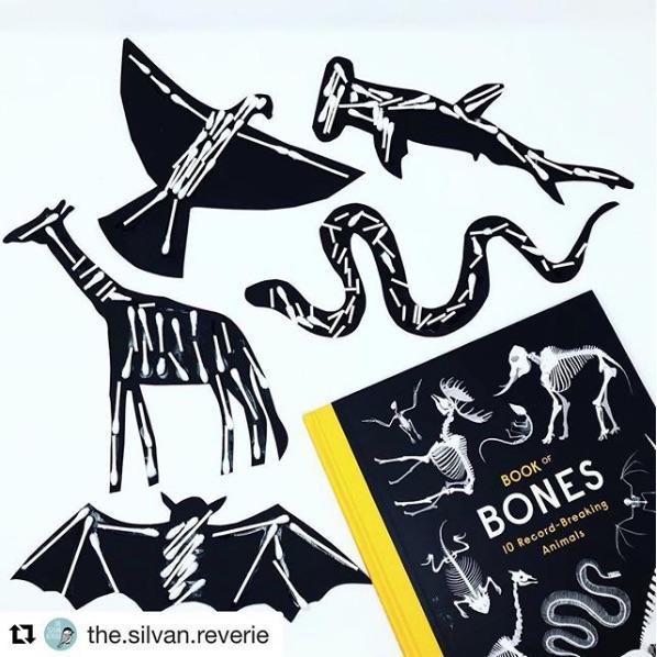 Bones_X-Ray Actiity.jpg
