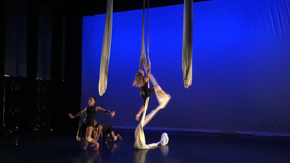 "A beautiful moment of "" BIRDSEYE"" - Choreography by CMA Bala Sarasvati. Photo Luis R. Cancel."